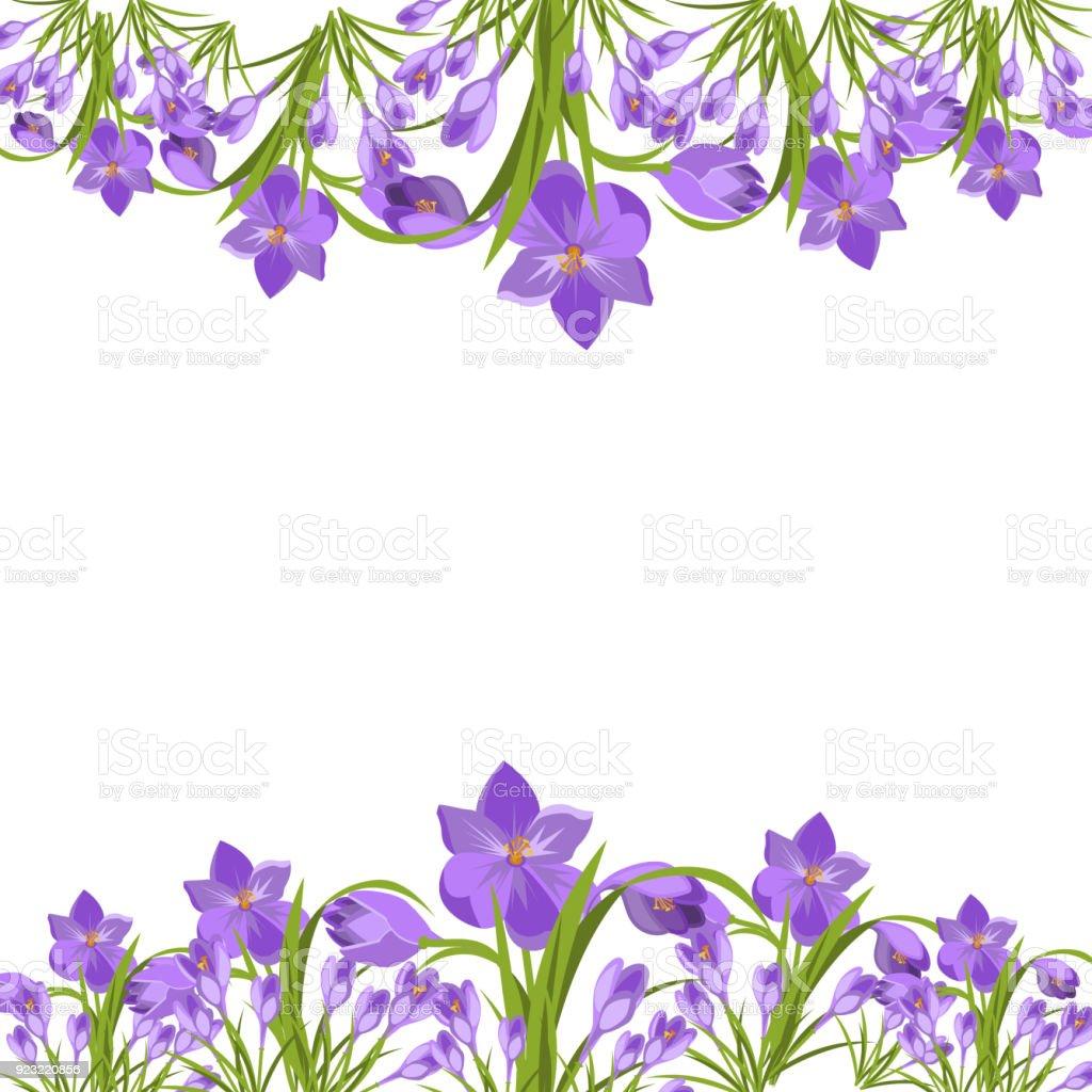 4 月植物紫のクロッカスの花春の花の美しい紫の花イラスト ベクターの
