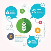 Crop and Finance infographic template
