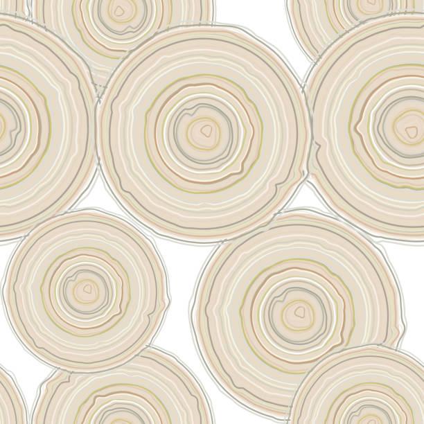 przekrój poprzeczny pień drzewa na białym tle, wzór. - wood texture stock illustrations