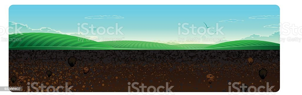 Cross Section Vineyard royalty-free cross section vineyard stock vector art & more images of absence