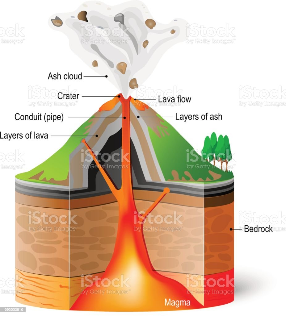 Cross-section of  volcano vector art illustration
