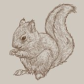 Just a simple squirrel crouched down with his hands up. You can fill in what he's eating! Separated to layers, easy to change or remove background colour.