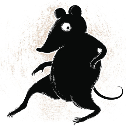 Crouching Rodent