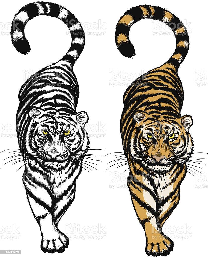 Crouching Tiger vector art illustration
