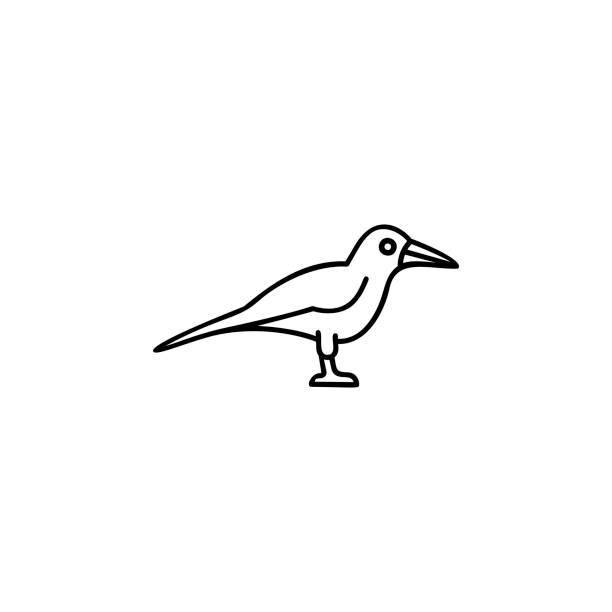 Vectores de Pinta Uñas y Illustraciones Libre de Derechos - iStock