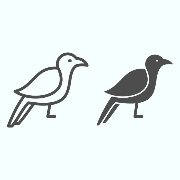 Crow line and solid icon. Scary dark corvus bird. Halloween vector design concept, outline style pictogram on white background, use for web and app. Eps 10. Crow line and solid icon. Scary dark corvus bird. Halloween vector design concept, outline style pictogram on white background, use for web and app. Eps 10 autumn clipart stock illustrations