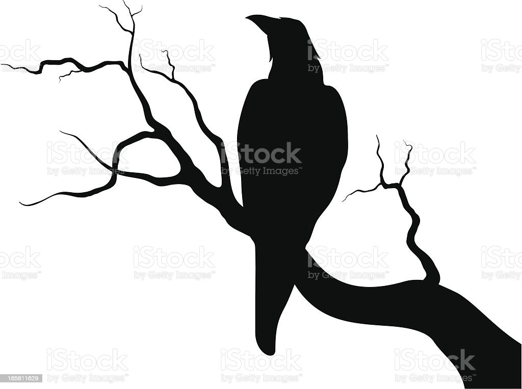 Crow on a branch vector art illustration