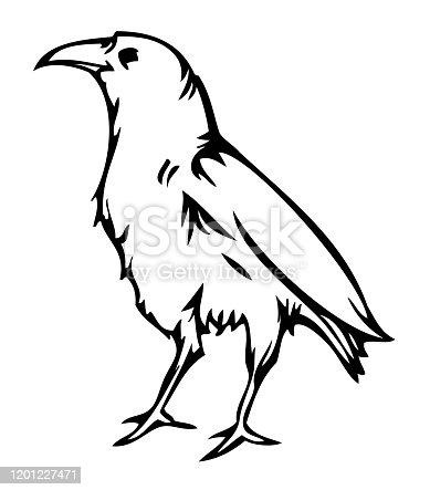 istock Crow raven , vector sticker tattoo 1201227471