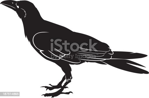 simple picture of a crow