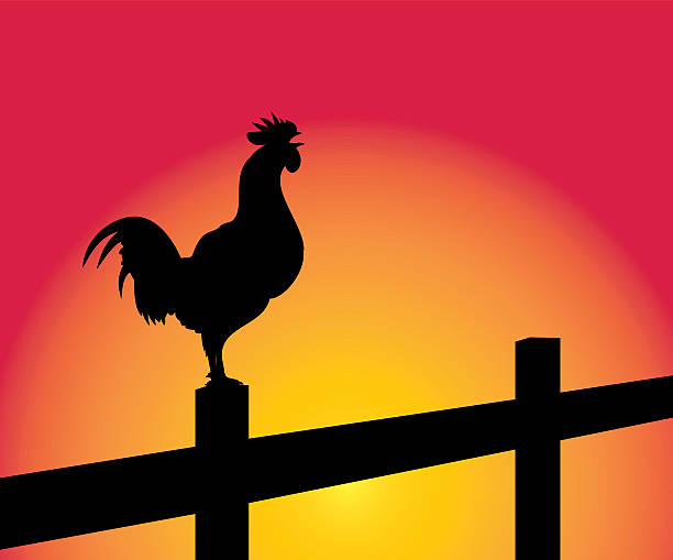 Royalty Free Waking Up Sunrise Clip Art, Vector Images ...