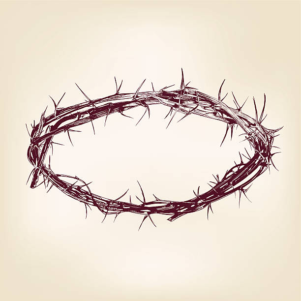 crown of thorns hand drawn vector llustration realistic sketch - thorn stock illustrations