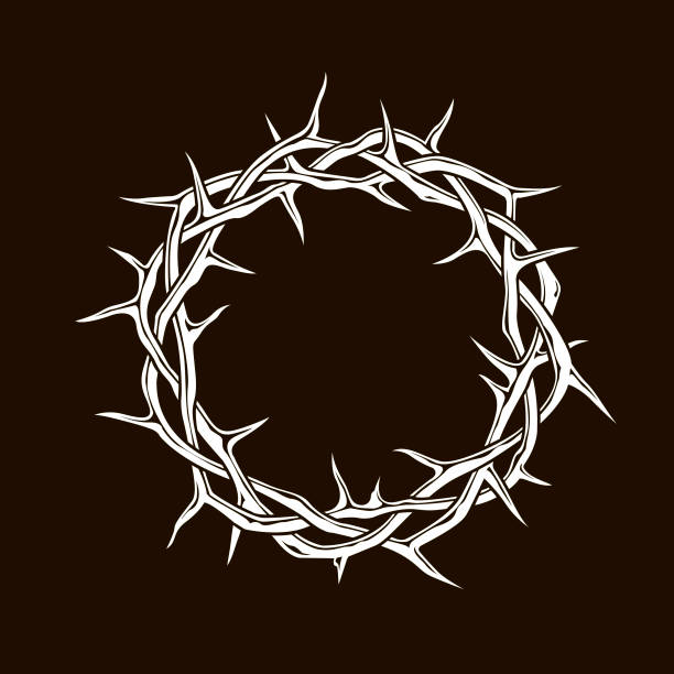 crown of thorns image white crown of thorns image isolated on black background sharp stock illustrations