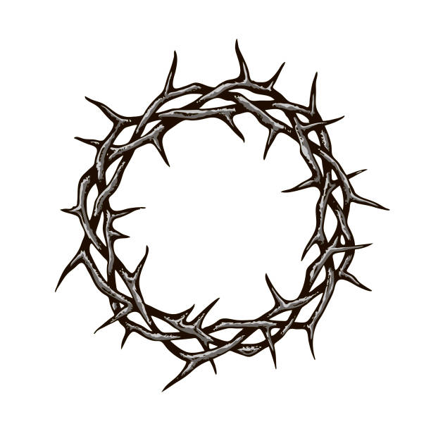 crown of thorns image black crown of thorns image isolated on white background sharp stock illustrations