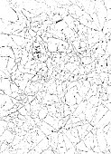 Crumpled Paper Vector Background White 08