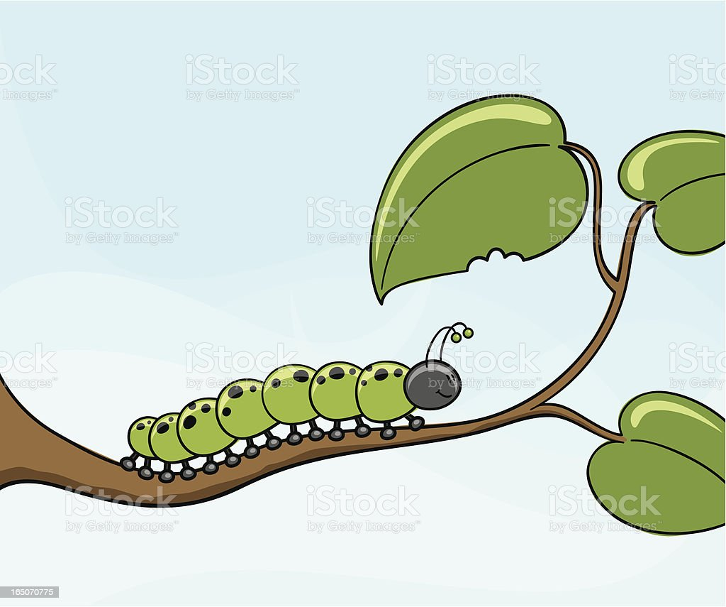 Crunch the Caterpillar - incl. jpeg vector art illustration