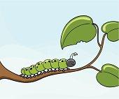 Crunch the Caterpillar - incl. jpeg