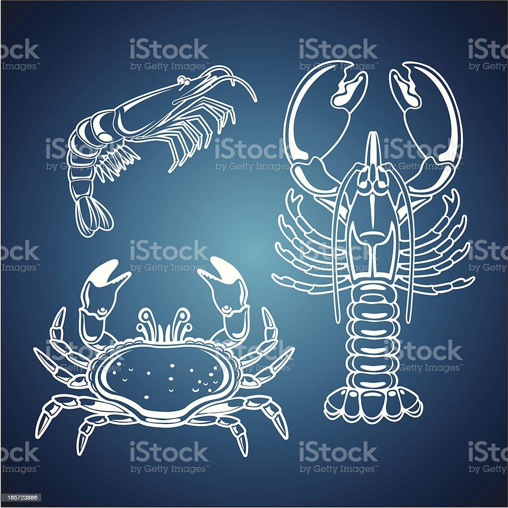 Crustacea royalty-free stock vector art