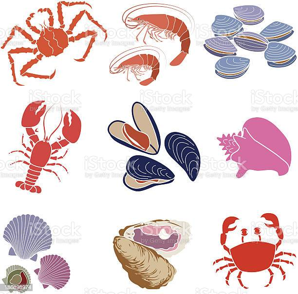 Crustaceans Shellfish And Mollusks Stock Illustration - Download Image Now