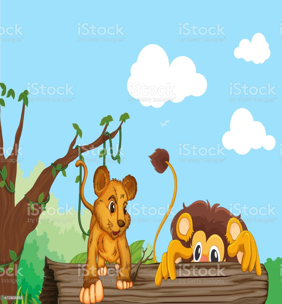 Cub and lion royalty-free stock vector art