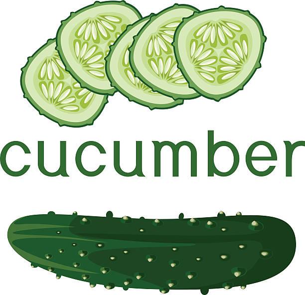 cucumber and sliced cucumber cucumber and sliced cucumber pickle slice stock illustrations
