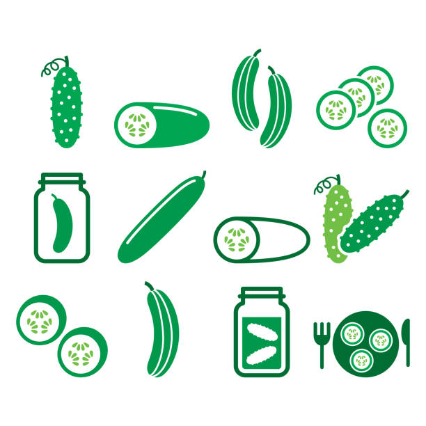 Cucumber, pickled, cucumber slices - healthy food vector icons set, green vegetable pictograms Vegetable icons - cucumber design isolated on white pickle slice stock illustrations