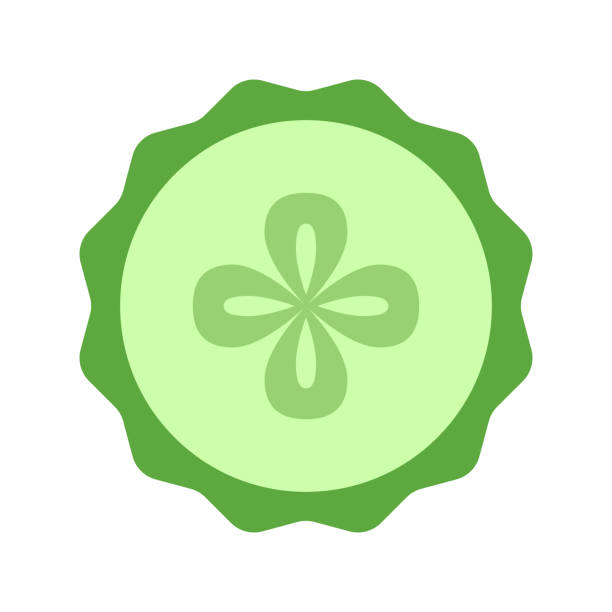 Cucumber slice closeup icon, green round piece of cucumber. Logo design, flat vector illustration. Cucumber slice closeup icon, green round piece of cucumber. Logo design, flat vector illustration pickle slice stock illustrations