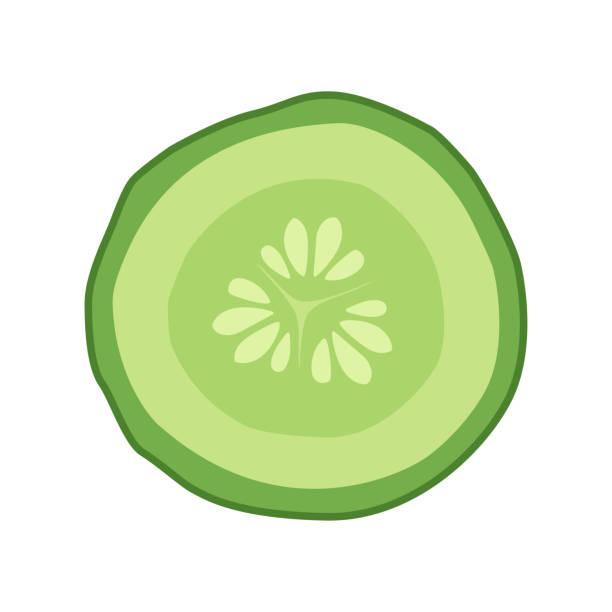 stockillustraties, clipart, cartoons en iconen met komkommer slice doorsnede met zaad - komkommer