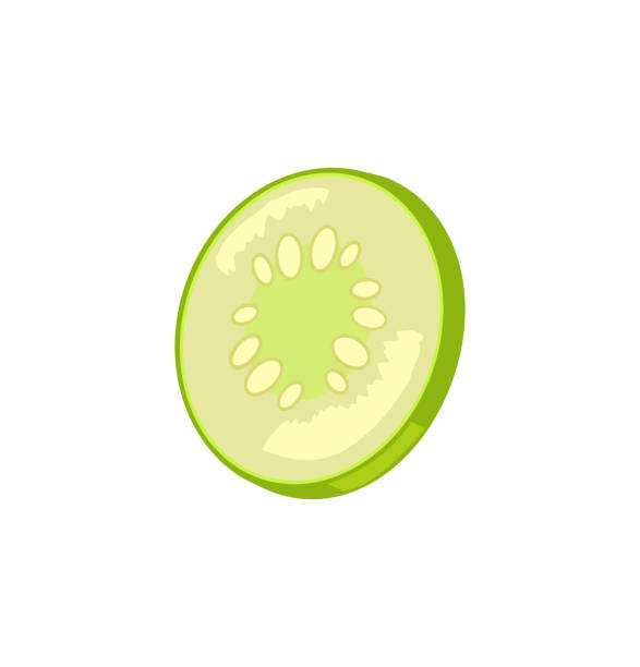 Cucumber Slice Icon Closeup Vector Illustration Cucumber slice icon closeup. Salted preserved vegetable sour taste of chopped organic plant. Pickles marinated vegetarian product isolated on vector pickle slice stock illustrations
