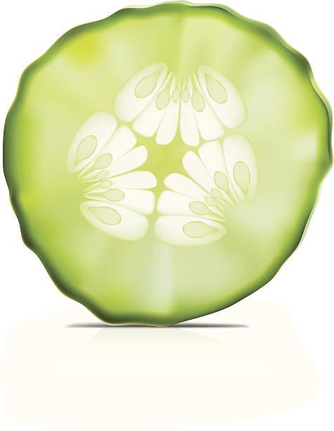 Cucumber- Vector illustration Cucumber- Vector illustration pickle slice stock illustrations