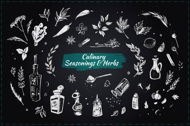 Culinary seasonings and herbs. Set sketch hand drawn vector icons. Chalk drawing style elements on blackboard for design restaurant menus and decorating cookbooks and recipes Culinary seasonings and herbs. Hand drawn icons salt stock illustrations