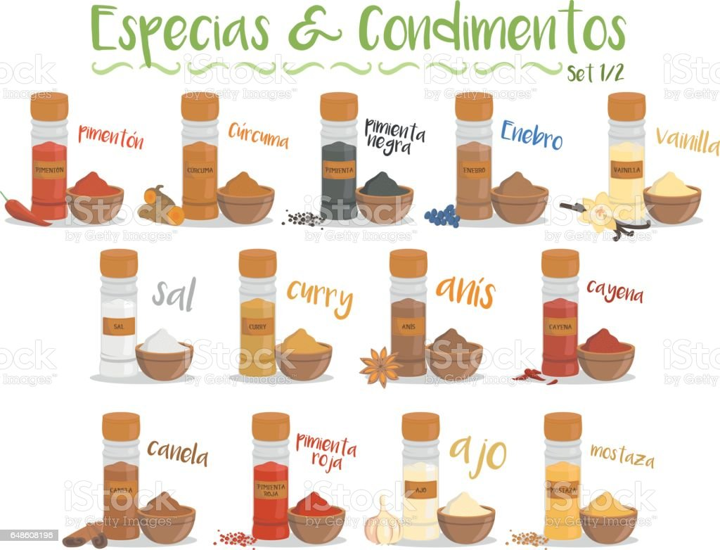 13 culinary species and condiments. Set 1/2. Spanish names. vector art illustration