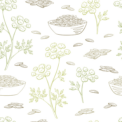 Cumin Plant Graphic Color Seamless Pattern Background ...