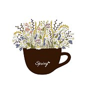 Cup with spring flowers on white background
