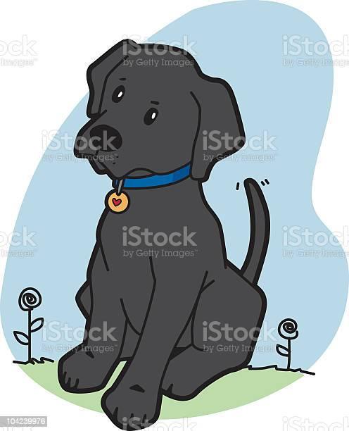Curious black labrador vector id104239976?b=1&k=6&m=104239976&s=612x612&h=5zolhxy2zahzfnpqhrkz1olpe0jvzegsxfsovu8y1ri=