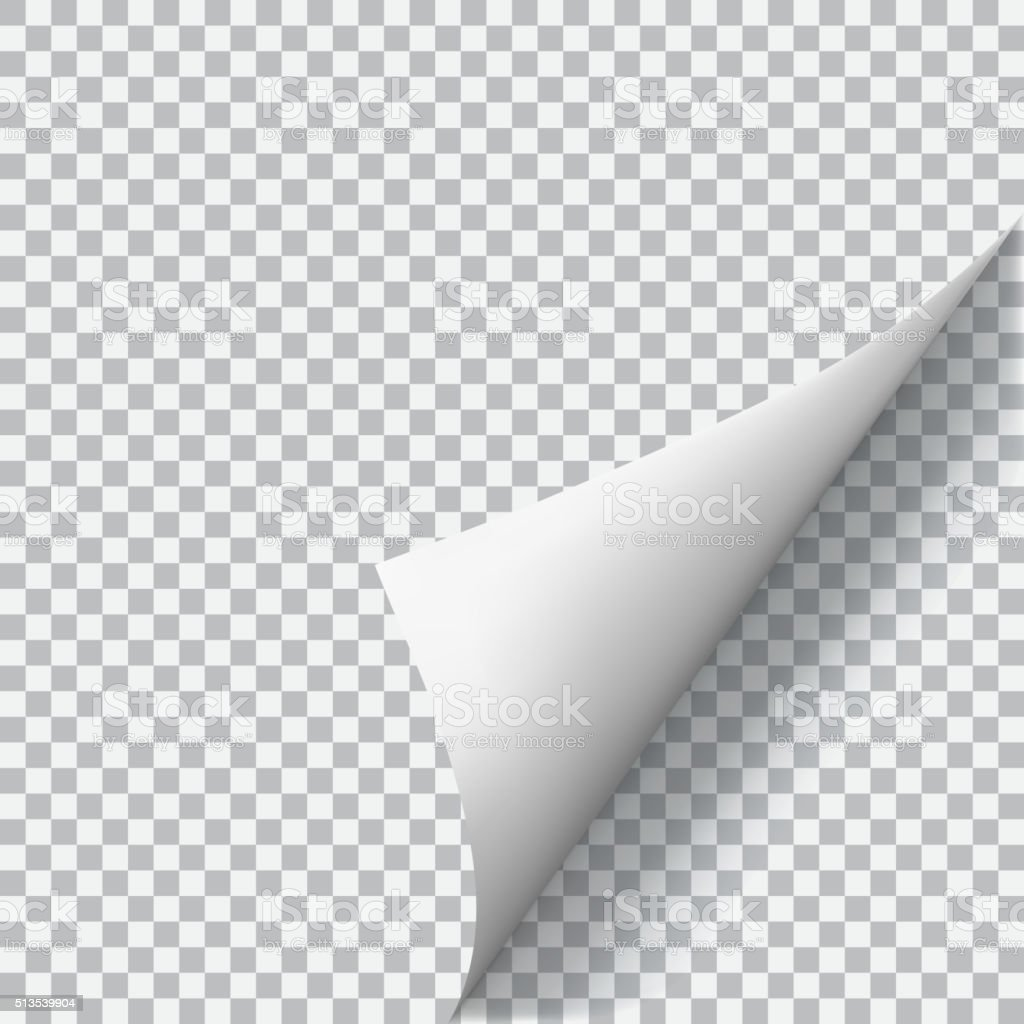 Curled corner of paper on transparent background vector art illustration