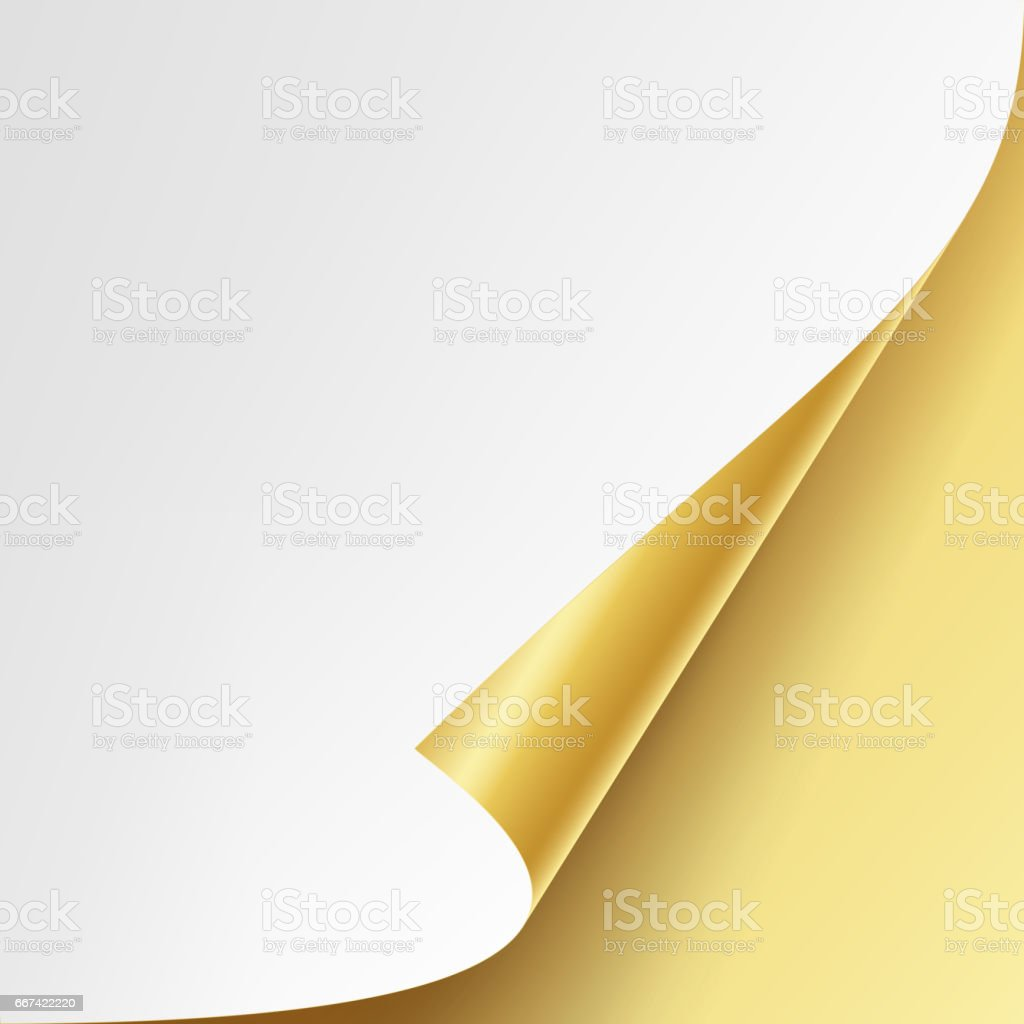 Curled Golden Metalic Corner Vector. White Paper with Shadow Mock up Close up Isolated vector art illustration