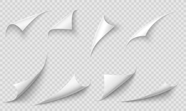 말린 페이지 코너. 사실적인 그림자 벡터 그림자 세트가 있는 용지 가장자리, 곡선 페이지 모서리 및 용지 컬 - 말기 stock illustrations