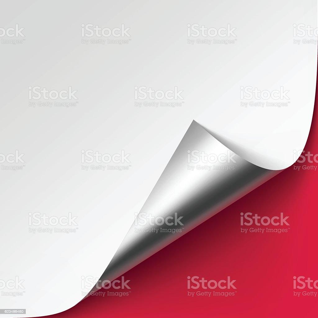 Curled Silver corner of paper on Background vector art illustration