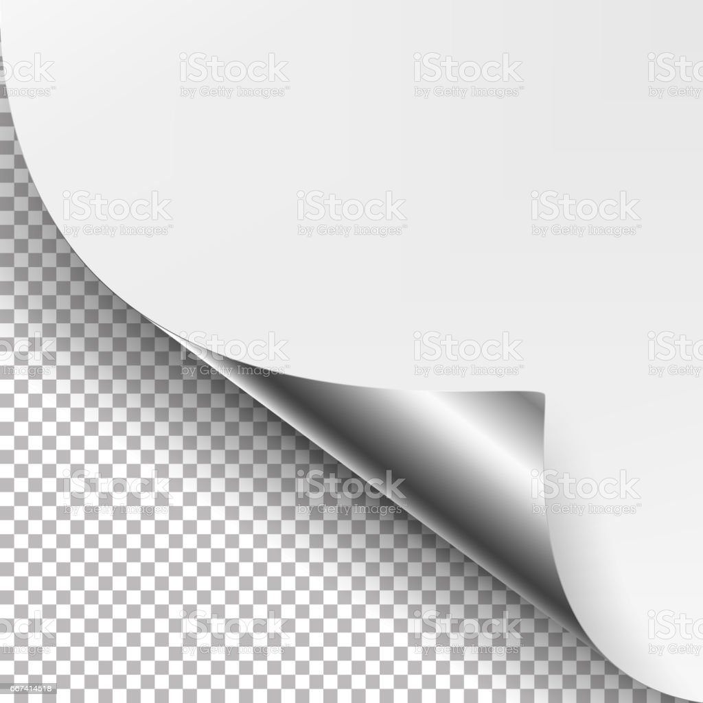 Curled Silver Metalic Corner Vector. White Paper with Shadow Mock up Close up Isolated on Transparent Background vector art illustration