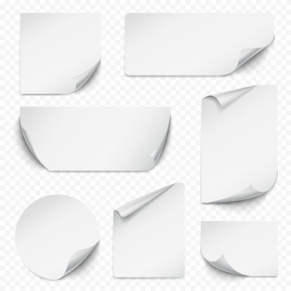 Curled sticker. Blank etiqueta rectangular paper with curved corners empty labels realistic collection vector
