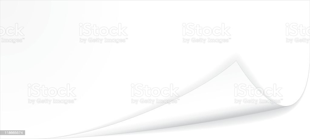 Curled white blank paper on a white background vector art illustration