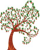 curly cherry tree