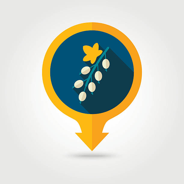 Currant flat pin map icon. Berry fruit vector art illustration