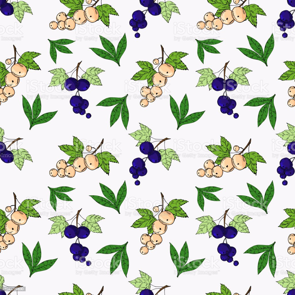 Currant Seamless Pattern Bright Cartoon Illustration For Childrens ...