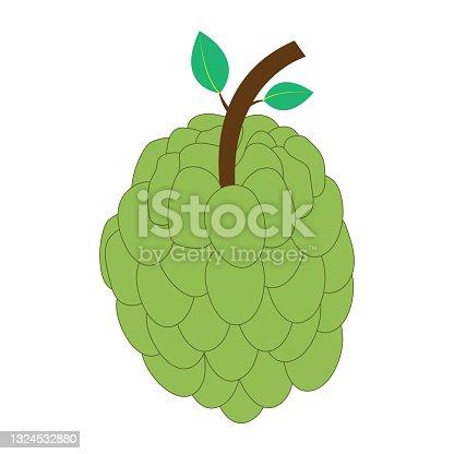 istock Custard apple flat icon on white background 1324532880