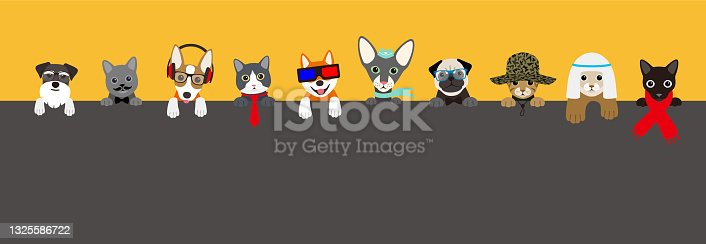istock Cut animals lining up, watching you. 1325586722