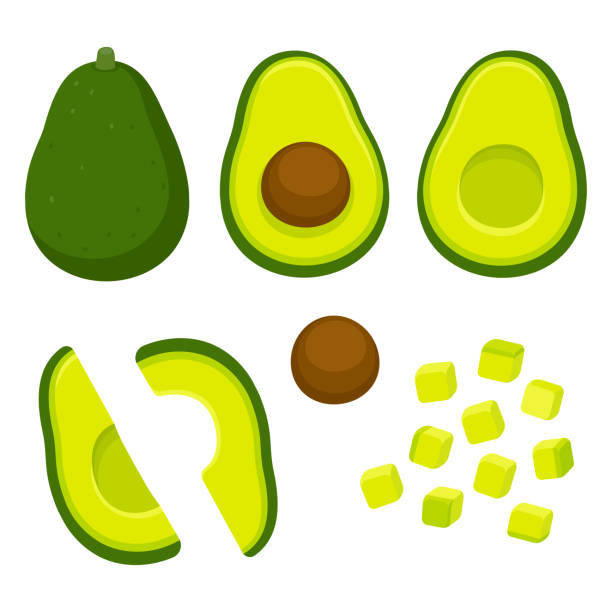 Cut avocado illustration set Avocado cutting vector set. Whole avocado, halved and pitted, and cubed for salad. Cartoon style cooking illustration. avocado stock illustrations