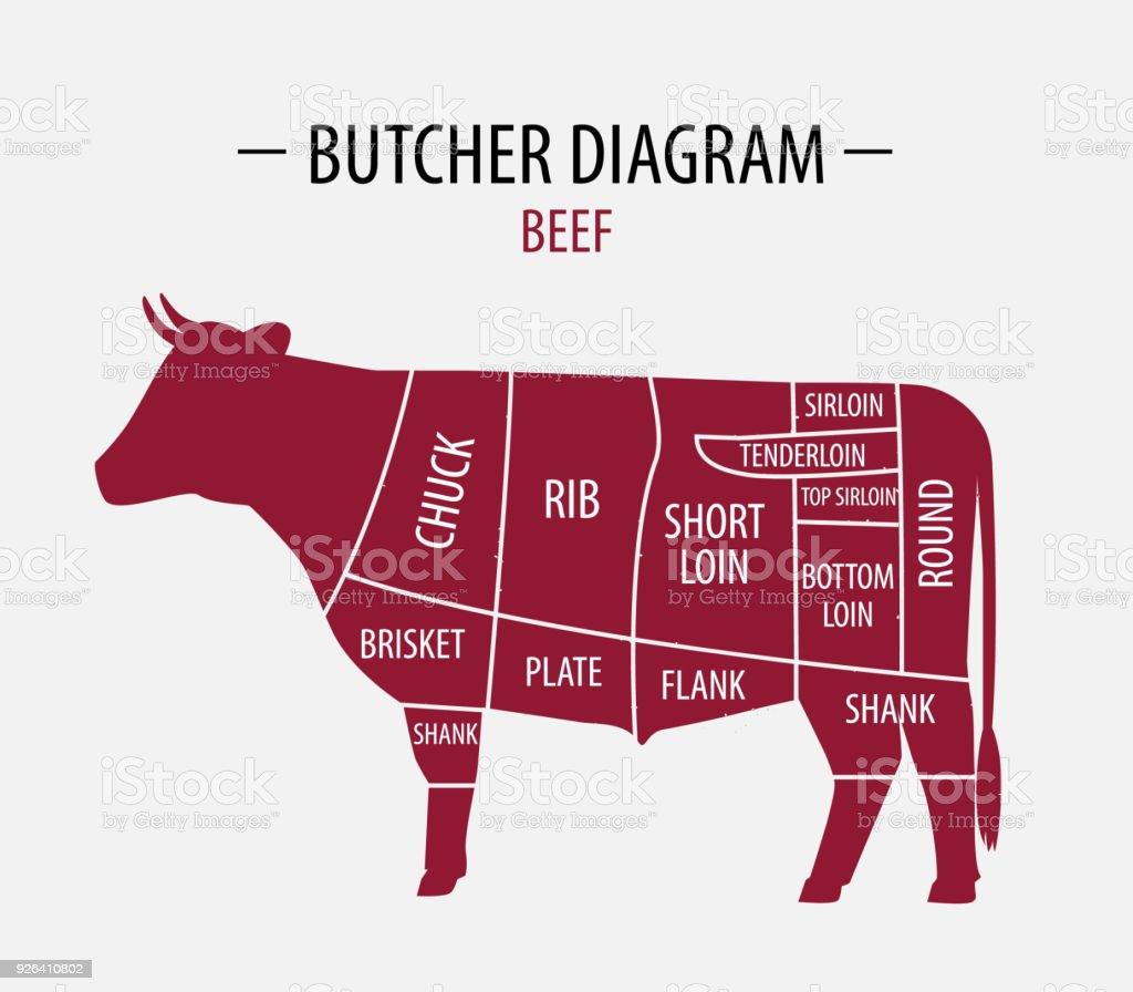 Schnitt Von Rindfleisch Plakatmetzgerdiagramm Für Lebensmittel ...