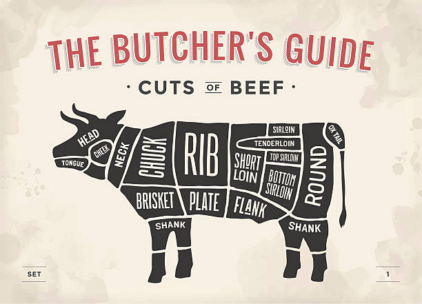 schnitt von rind. poster und programm-butcher diagramm - rindfleisch stock-grafiken, -clipart, -cartoons und -symbole