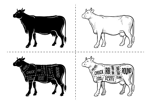 Cut of beef set. Poster Butcher diagram - Cow. Vintage typographic hand-drawn.